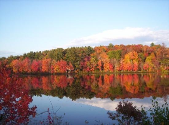 Bar Harbor, ME: See what I mean about The Fall in New Hampshire... Breath taking, isn't it...