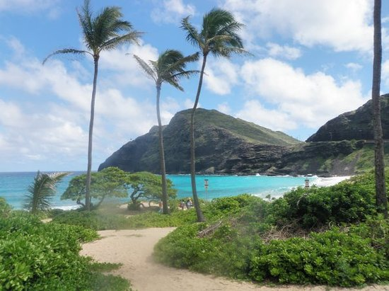 Waimanalo Picture