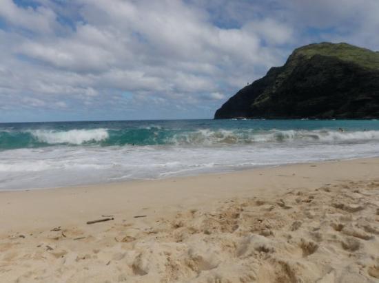 Makapu'u Beach Bild