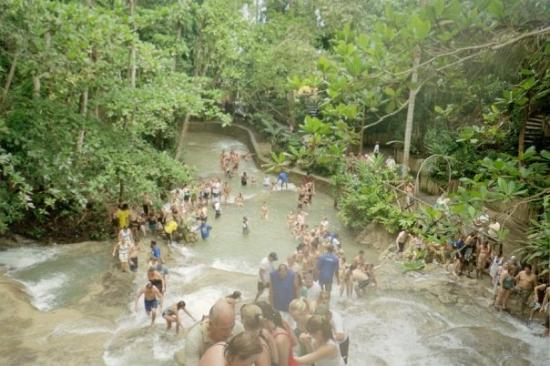 Climbing Dunn River Falls In Ocho Rios Jamaica Picture