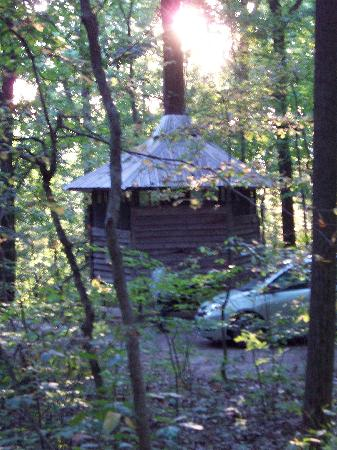 "Maple Tree Campground: One of the few ""real"" tree houses"