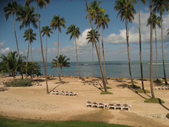 Marmalade Restaurant & Wine Bar: Lovely day on the beach