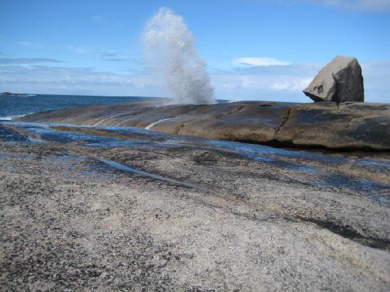 Tasmania, أستراليا: Bicheno BlowHole