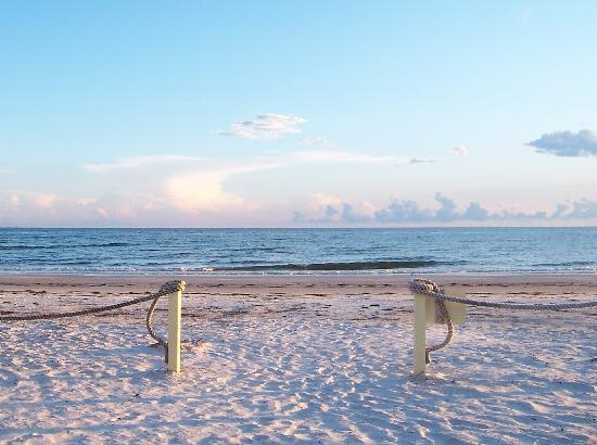 The Surf and Us South Shore Resort: The Beautiful Sea