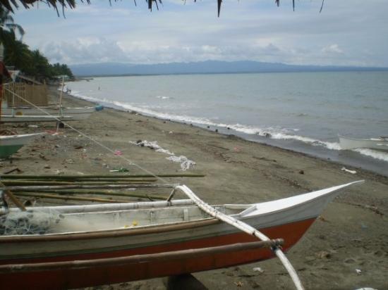 Leyte Island照片