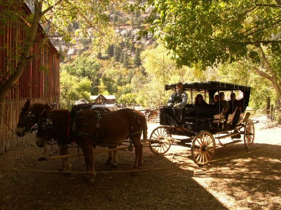 ‪Ouray Mule & Carriage Company‬