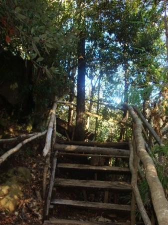 Temuco Photo