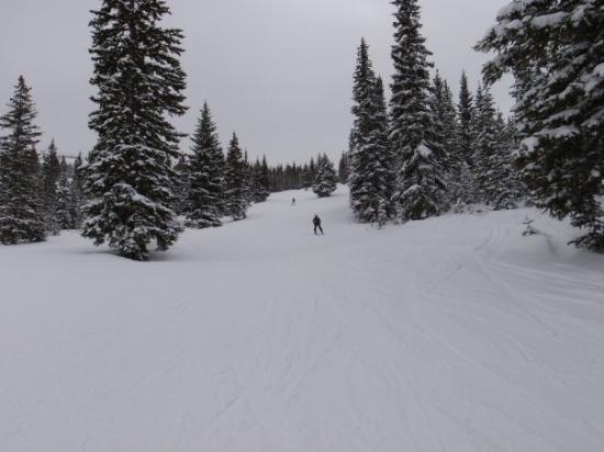 Gunners View Run - Snowmass.
