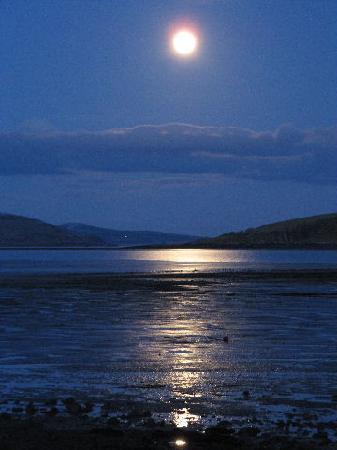 Balcary Mews Bed & Breakfast: full moon over Heston Island
