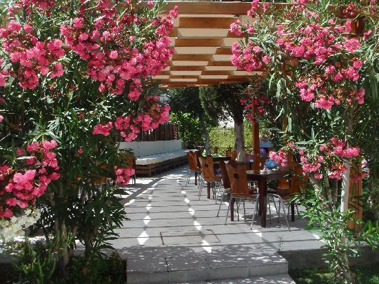 Bitez, Turkije: Hotel area