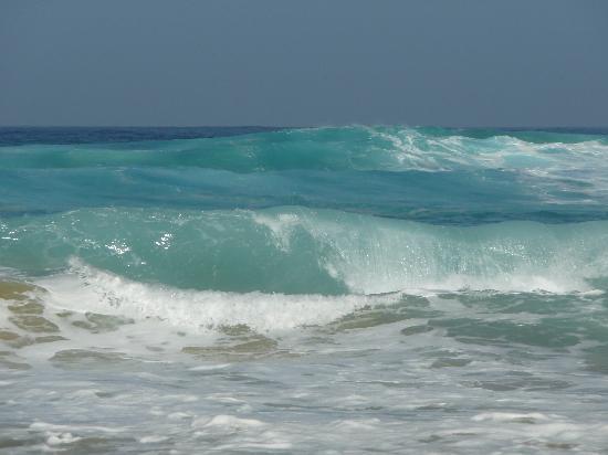 Playa de Cofete: L'Atlantique à la plage de Cofete.(2010-01-19)