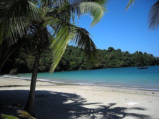 Barefoot Panama