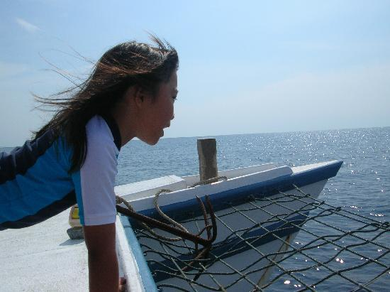 Lumbalumba Diving: My daughter was watching a bunch of wild dolphins which followed our boat.