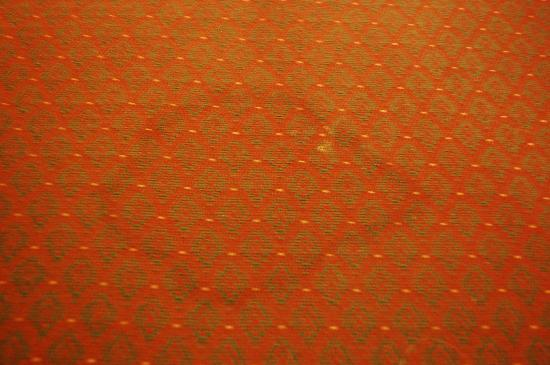 Econo Lodge: Carpet stain