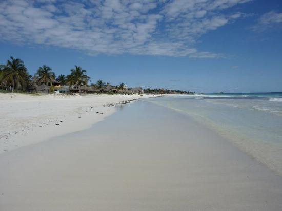 Retiro Maya Villas : The beach