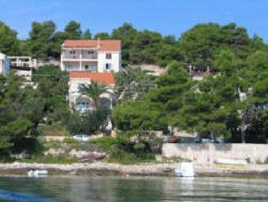 View on Apartments Danijela