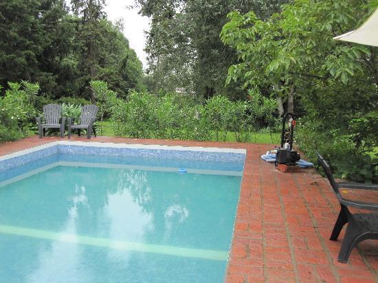 Casa Hernandez: pool view