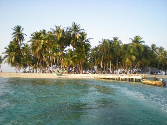 Anbabnega Lodge: Needle Island