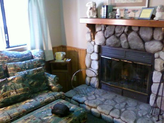 Sleepy Hollow Cabins and Hotel : Cozy living room w/ fireplace