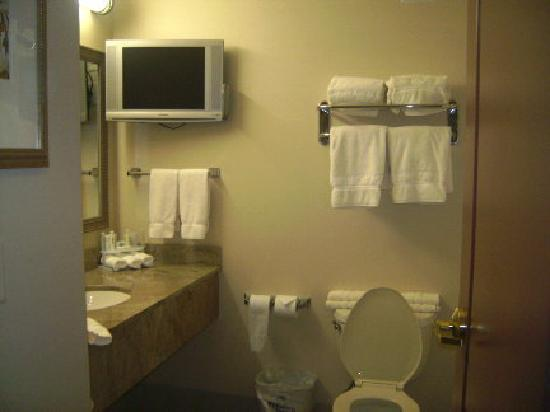 Holiday Inn Express Hotel & Suites Wausau: Bathroom