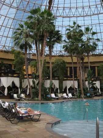 Harrah's Resort Atlantic City: great pool under the dome with palms
