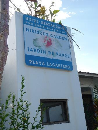 Hotel Hibiscus Garden: Hibiscus Garden