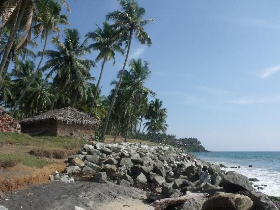 Blue Marine Guest House: Black Beach, Varkala