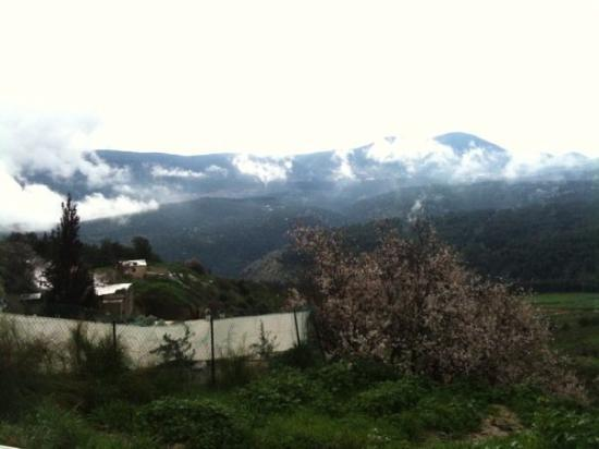 Safed, İsrail: My Countryside.