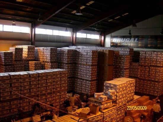Brugal Rum Center: RUM...in the Brugal refinery