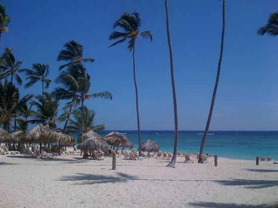 Bavaro Beach Photo