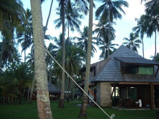 Tamandare, PE : bungalows