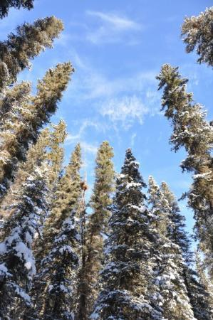 Explorer Canada Holidays Picture