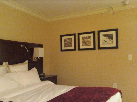 Delta Hotels Chesapeake: Room Art