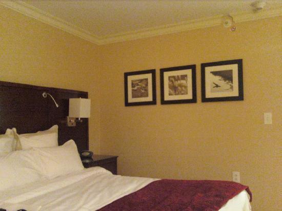 Delta Hotels by Marriott Chesapeake: Room Art