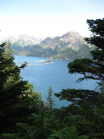 Kenai Fjords Wilderness Lodge: view from the hike