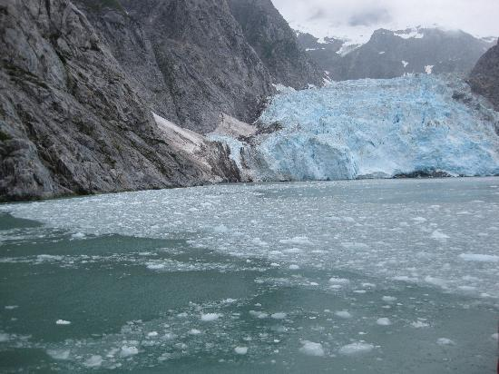 Kenai Fjords Wilderness Lodge: calving glacier on boat trip