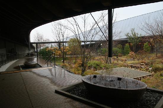 The Kochi Prefectural Makino Botanical Garden: 牧野植物園