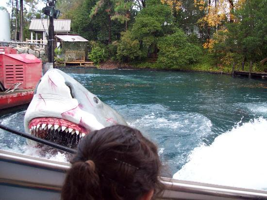 Orlando, FL: Tiburón - Universal Studios