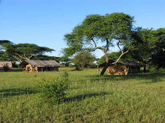 Mapito Tented Camp Serengeti