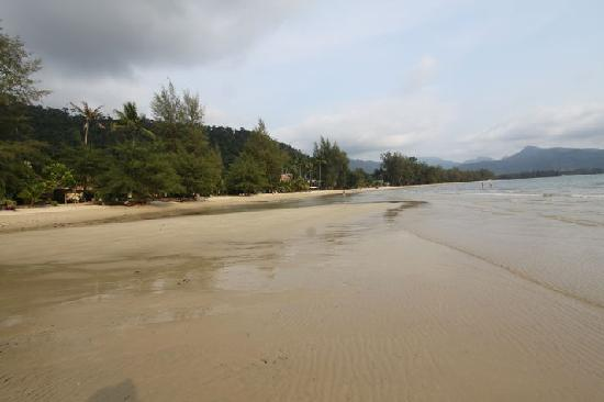 The Grand Tree Resort: Beach just minutes from Saigar's