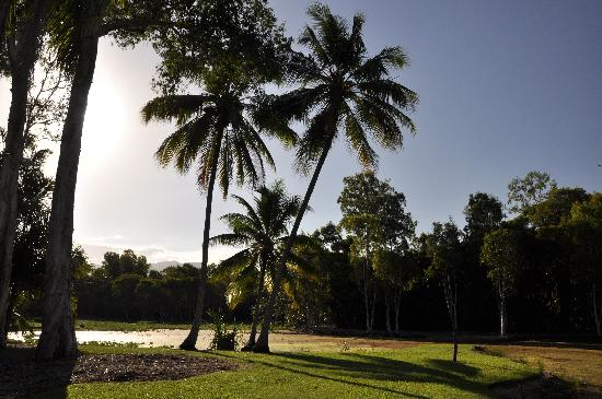 Centenary Lakes - Cairns Botanic Gardens: A nice place to relax