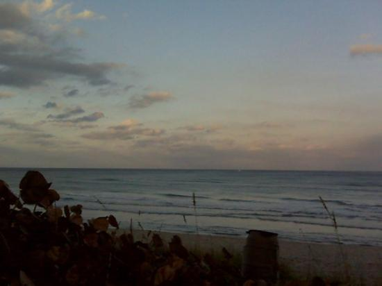 Jupiter, FL: Minus the trash can it is a beautiful place to be ;0P
