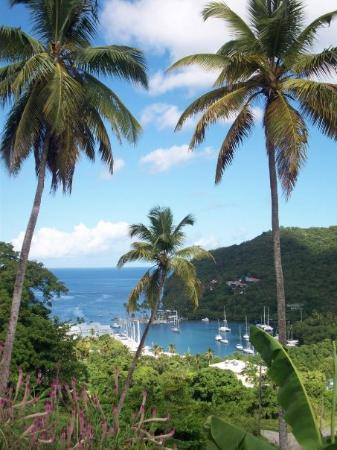 "St. John's, Antigua: Bay on St. Lucia where they filmed ""Blue Lagoon.""  There were so many others that would have wor"