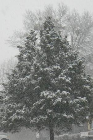 Jenkinsburg صورة فوتوغرافية