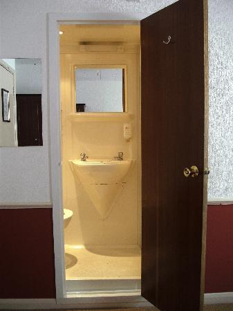 Comfort Inn Birmingham: The bathroom, literally built inside a cupboard!