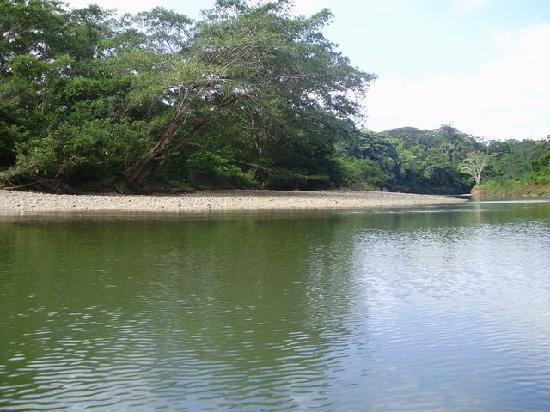 Panama: Rio COCLESITO
