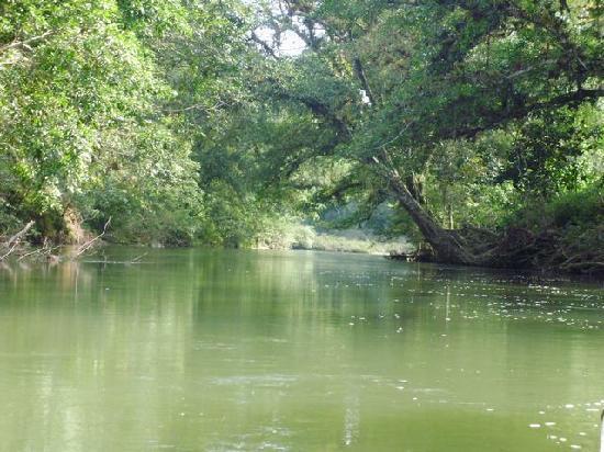 Panamá: Recorrido por el Rio Coclesito