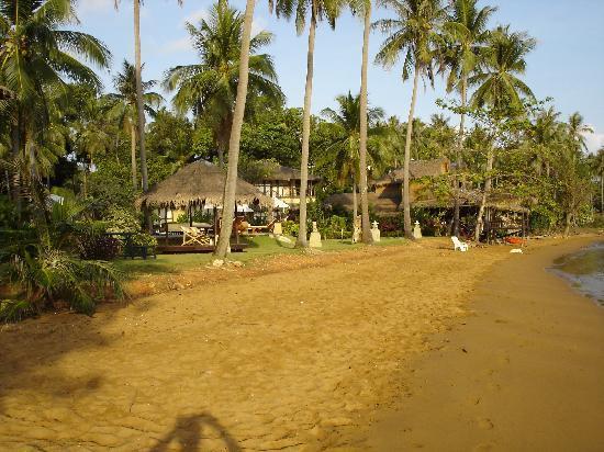 Amber Sands Beach Resort: Amber Sands