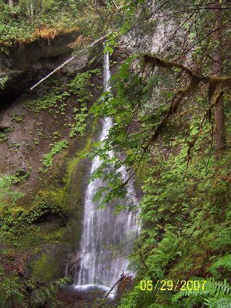 Port Angeles, WA: Marymere Falls