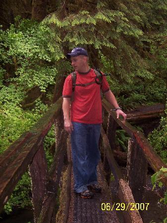 Port Angeles, WA: Log bridge on Marymere Falls Trail